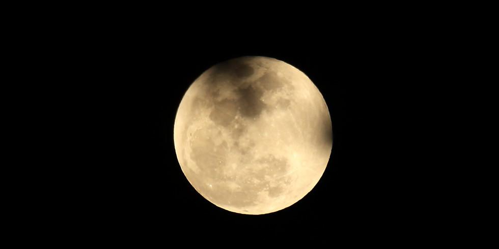 Full Moon Walk - April