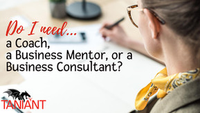 Do I need a Coach, Business Mentor, or Business Consultant?