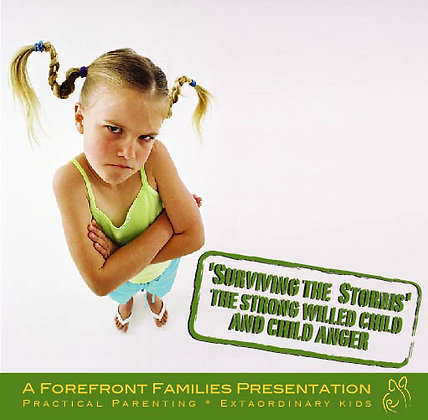 Surviving The Storms: The Strong Willed Child