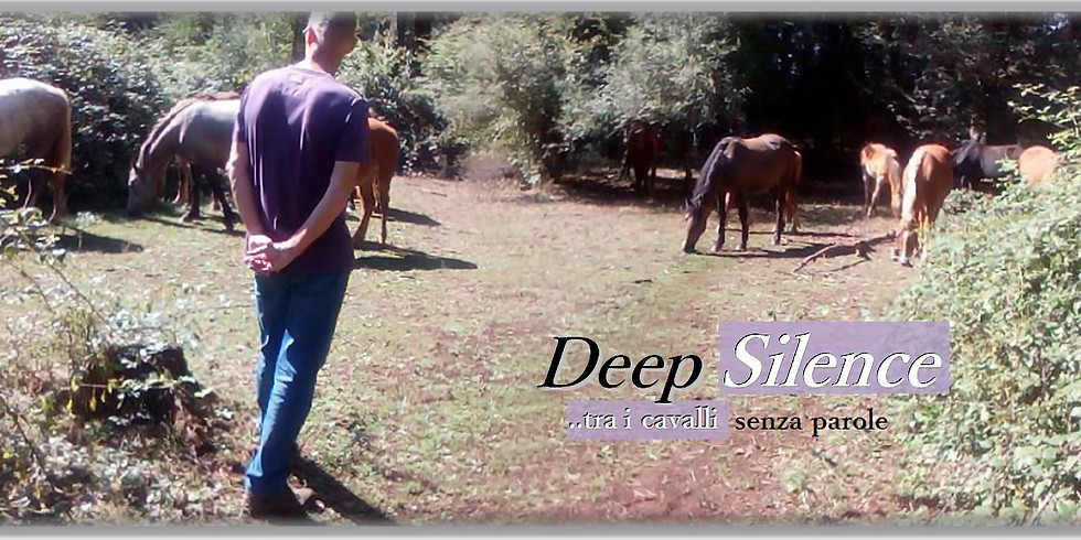 Deep Silence Horse: tra i cavalli senza parole