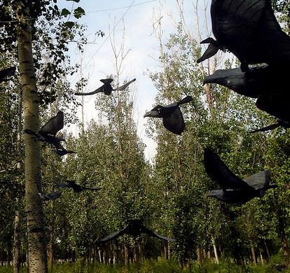 christopher_pelley_mechanical-birds.JPG