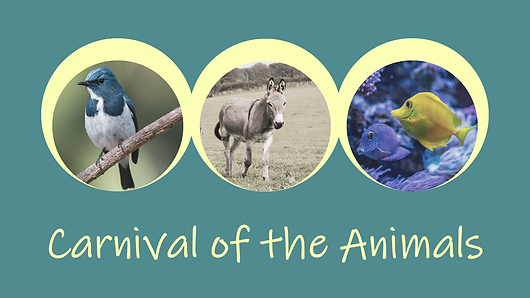 Listening activity for the entire family, from children to adults with lyrical hints to identify the animal depicted in instrumental music. Age 12+. Sign up for FREE trial!