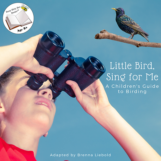 Visual and musical guide to birding for children with bonus picture/call quizzes. Age 8+. Sign up for FREE trial!