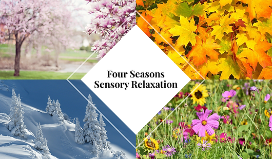 Four seasons music and nature video for multi-sensory relaxation. Age 13+. Sign up for FREE trial!