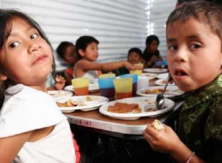 Vitaminas necesarias para prevenir anemia en niños mexicanos