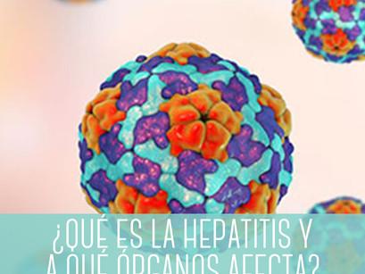 ¿Qué es la hepatitis y a qué órganos afecta?
