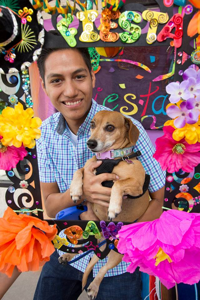 Fiesta 4 Paws 2014 74.png