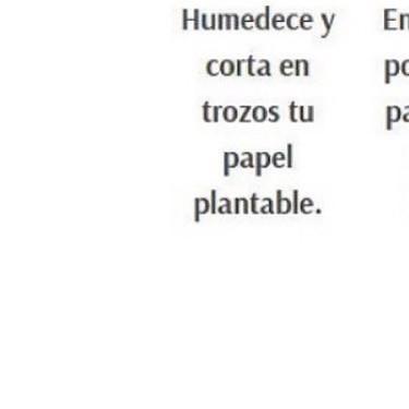 Cómo usar tu papel plantable ♻️🌱.jpg