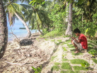 Elämää beach housessa