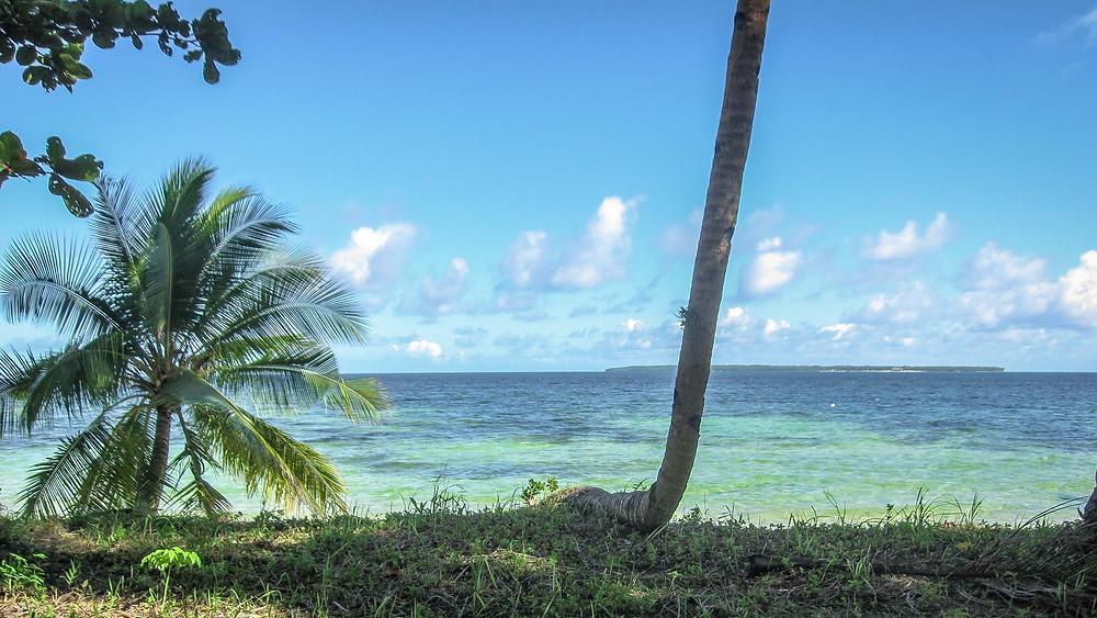 Sufing carabao beach