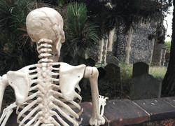 Skeleton on wall