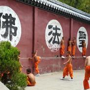 Fawang Temple training