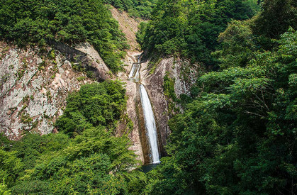 布引の滝 春