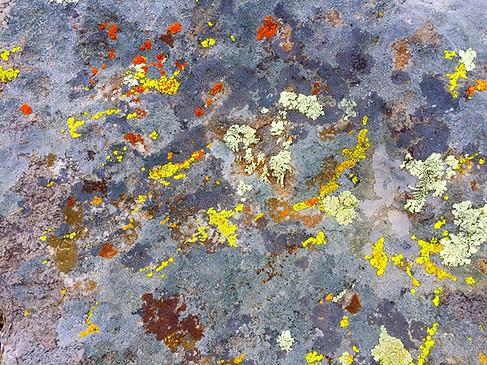 Paint_On_Rock_IMG_1321.jpg