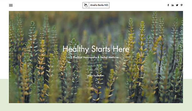 Health website templates – Naturopath