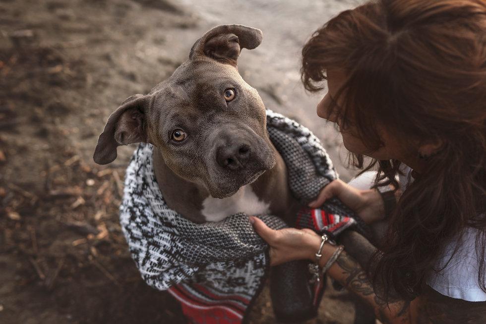 Lynnpix Photography I Tierfotografin mit Herz spezialisiert auf Hundefotografie in der Schweiz, buche jetzt dein unvergessliches Fotoshooting mit deinem Hund von Chur / Graubünden bis Zürich