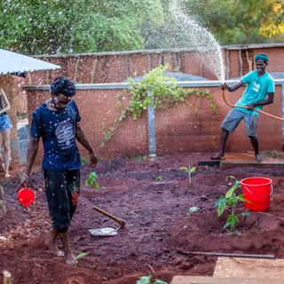 Kitchen Gardening at YouthLink