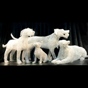 QUALICUM DOGS