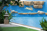 pool wall.jpg