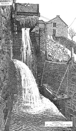 Waterfalls at Ermington Mill