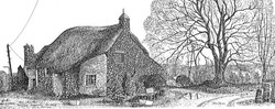 Mother Hubbard's Cottage