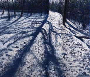 SnowShadowsFredweb.jpg