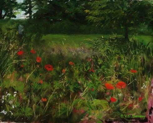 Summer field of Poppies Plein Air