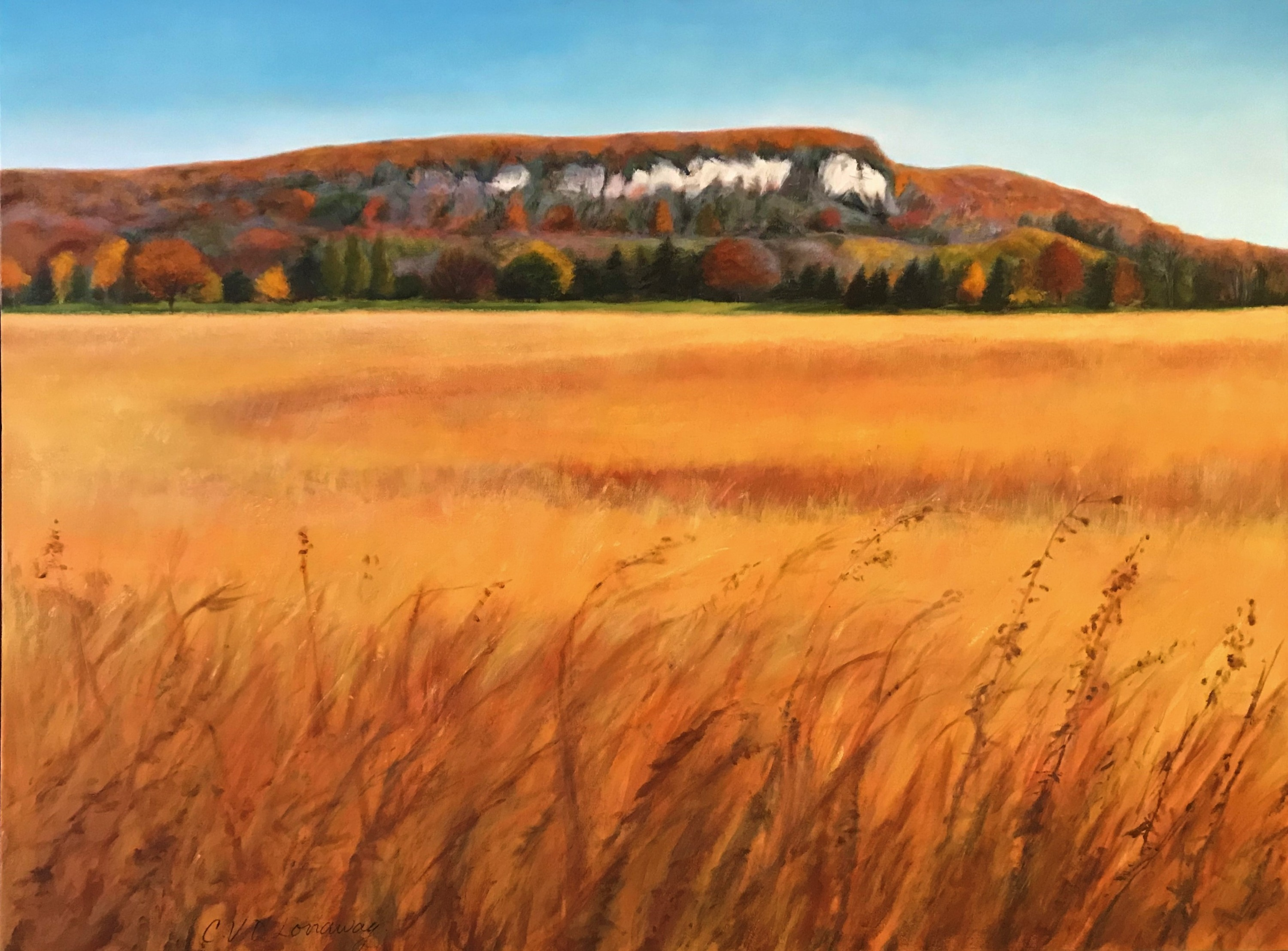 View of Rattlesnake Point