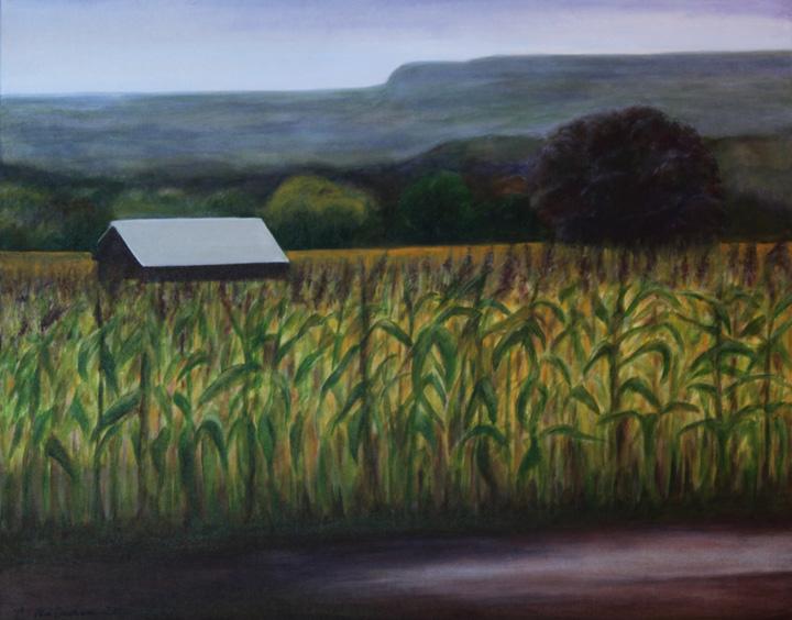 springridge farm_1779