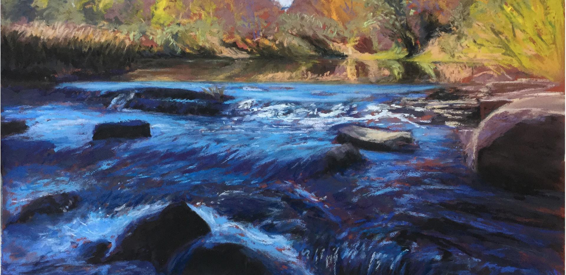 Cooper's Hollow Creek