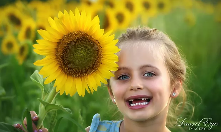 Sunflower field mini session