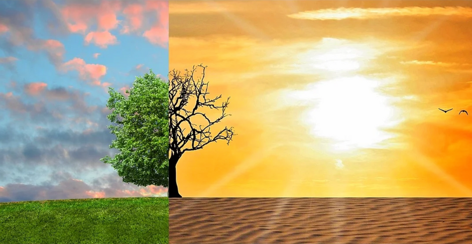 Weather Vs. Climate: Understanding the Difference