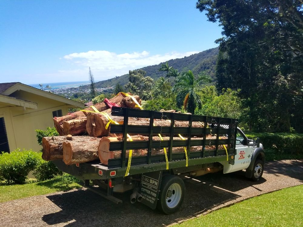 Ironwood Log Hauling