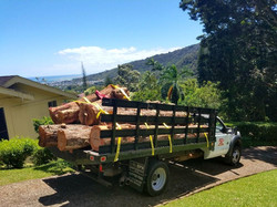 Ironwood Log Hauling