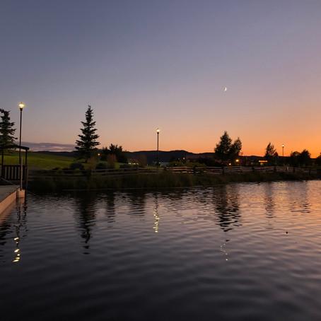 The Growth & Development of Logan Lake