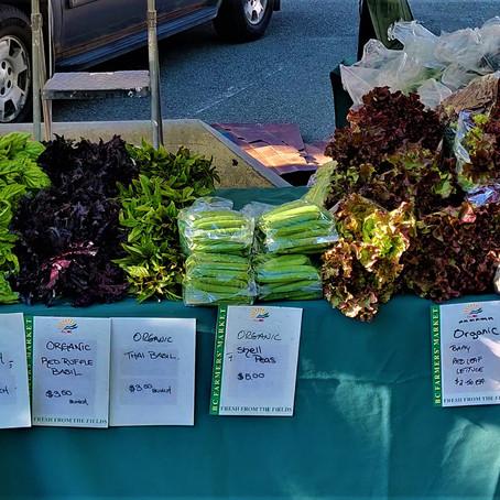 Fresh & Local at The Kamloops Farmer's Market
