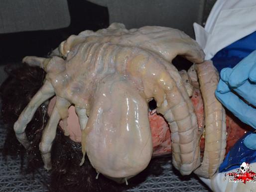 #HHN24 FLASHBACK: AVP (Alien vs Predator)