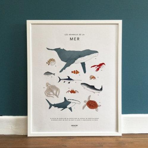MEMORY AFFICHES - Les animaux de la mer