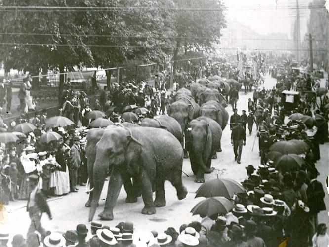 Early-1900s.jpg