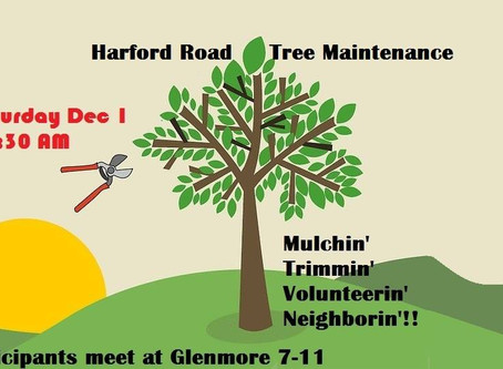 Join Us December 1 for Pruning and Mulching Tree Pits Along Harford Road