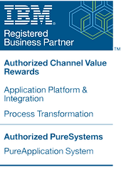 Garex IBM Business Partner