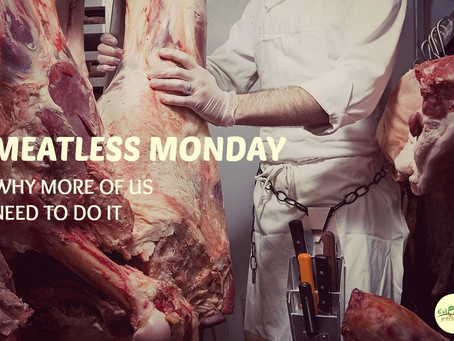 MEATLESS MONDAY… WHY MORE OF US NEED TO DO IT