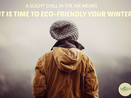 A SLIGHT CHILL IN THE AIR MEANS IT IS TIME TO  ECO-FRIENDLY YOUR WINTER