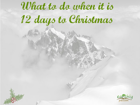 WHAT TO DO WHEN IT IS 12 DAYS TO CHRISTMAS