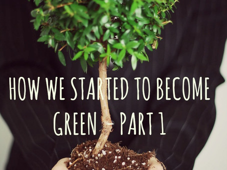HOW WE STARTED TO BECOME GREEN