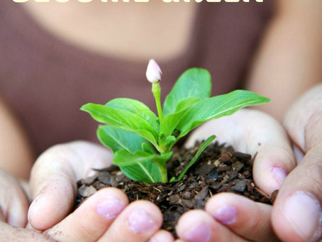 10 REASONS TO GROWN YOUR OWN – A SIMPLE WAY TO BECOME GREEN