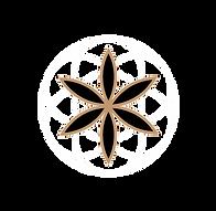 Peak-Perforamnce-Logo.png