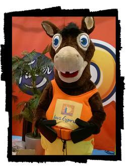 CTO donkey