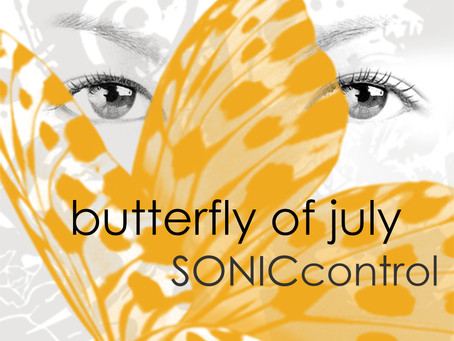 """""""Butterfly of July"""", our second single is out now."""