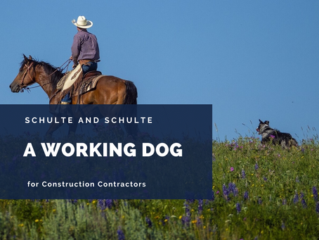 Your Construction Business Has a Dog